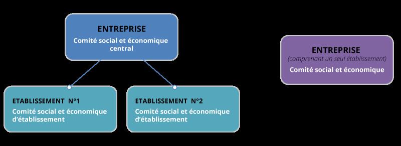 Différents niveaux de mise en place du CSE